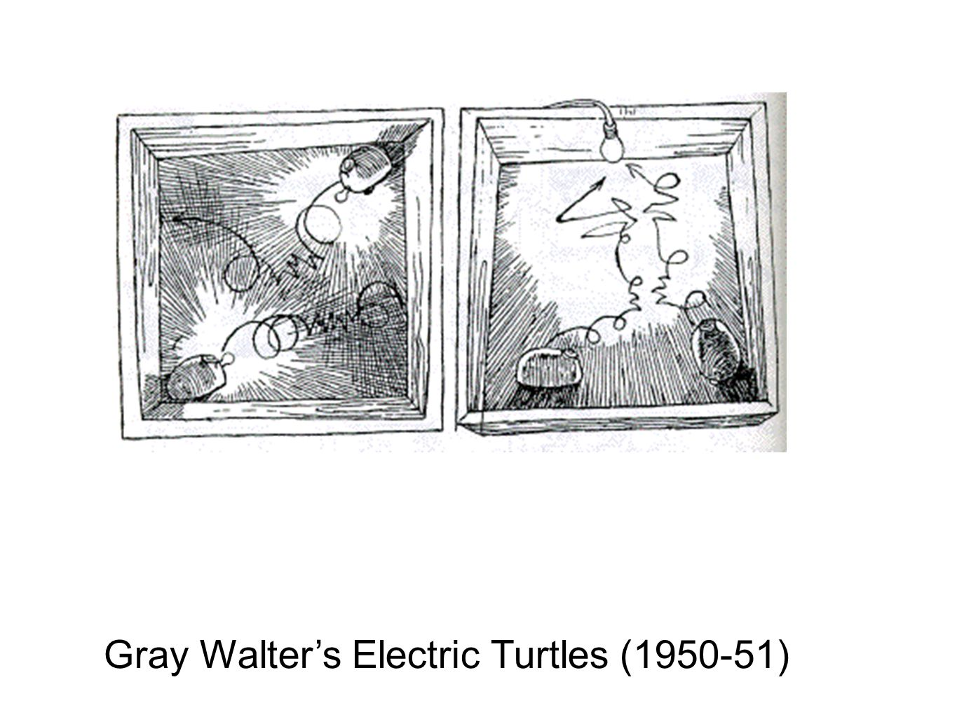 Gray Walter's Electric Turtles (1950-51)