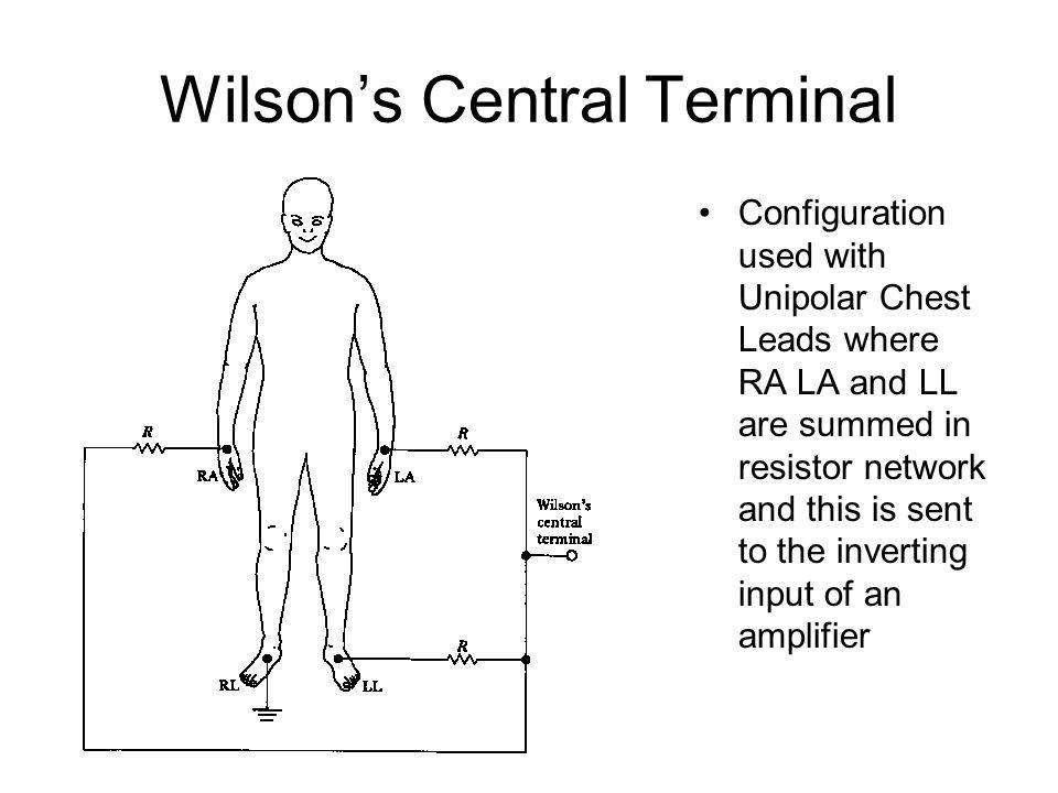 Wilson's Central Terminal