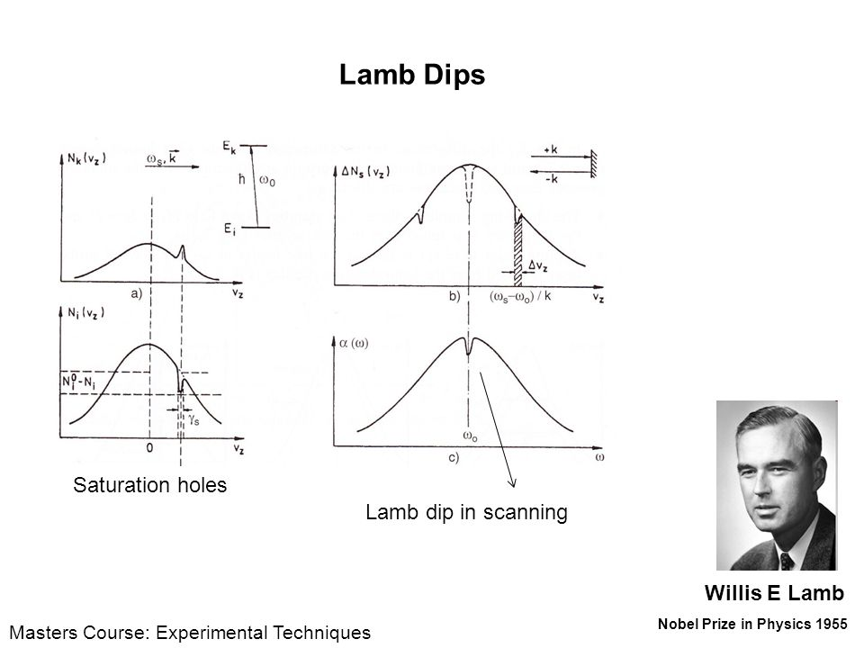 Lamb Dips Saturation holes Lamb dip in scanning Willis E Lamb