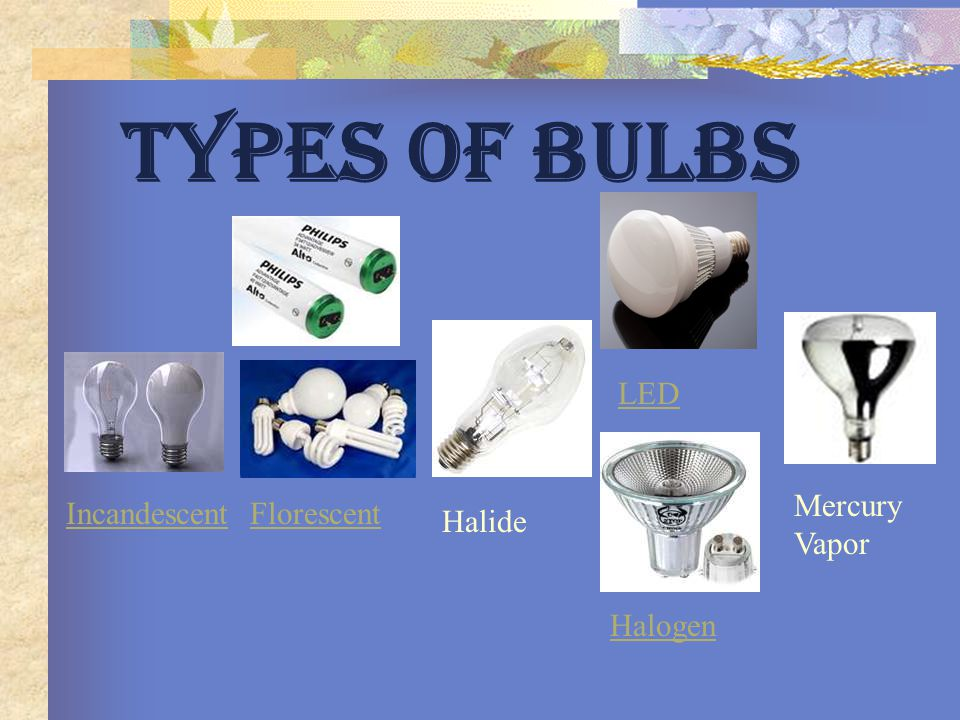 TYPES OF BULBS LED Mercury Vapor Incandescent Florescent Halide