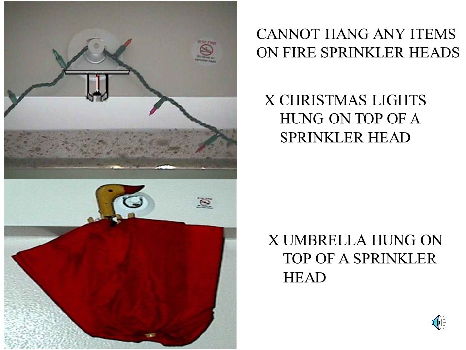 CANNOT HANG ANY ITEMS ON FIRE SPRINKLER HEADS. X CHRISTMAS LIGHTS. HUNG ON TOP OF A. SPRINKLER HEAD.
