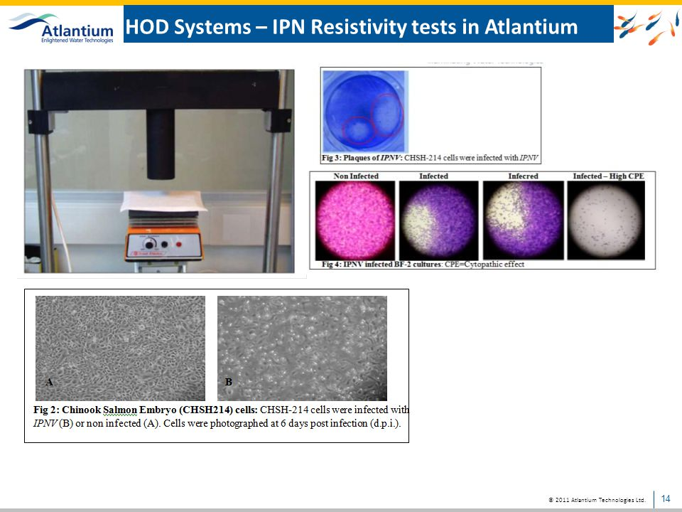 HOD Systems – IPN Resistivity tests in Atlantium