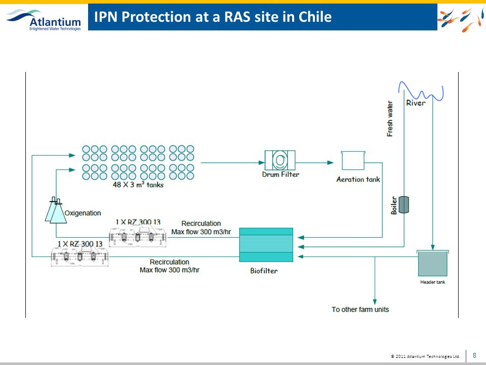 IPN Protection at a RAS site in Chile