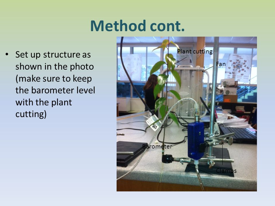 Method cont. Set up structure as shown in the photo (make sure to keep the barometer level with the plant cutting)