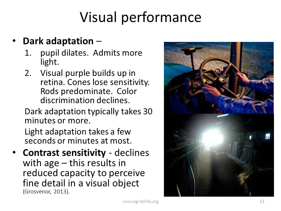 Visual performance Dark adaptation –