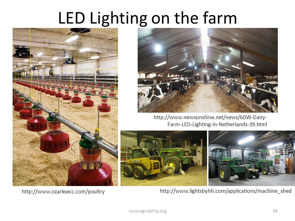LED Lighting on the farm