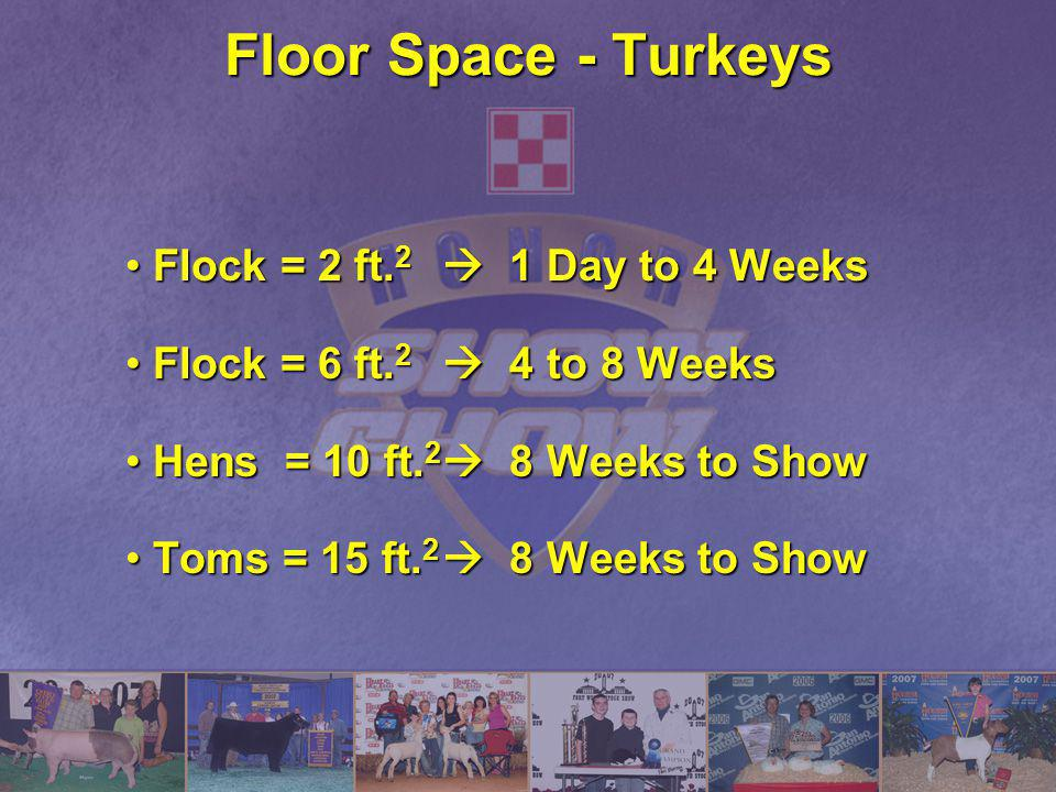 Floor Space - Turkeys Flock = 2 ft.2  1 Day to 4 Weeks
