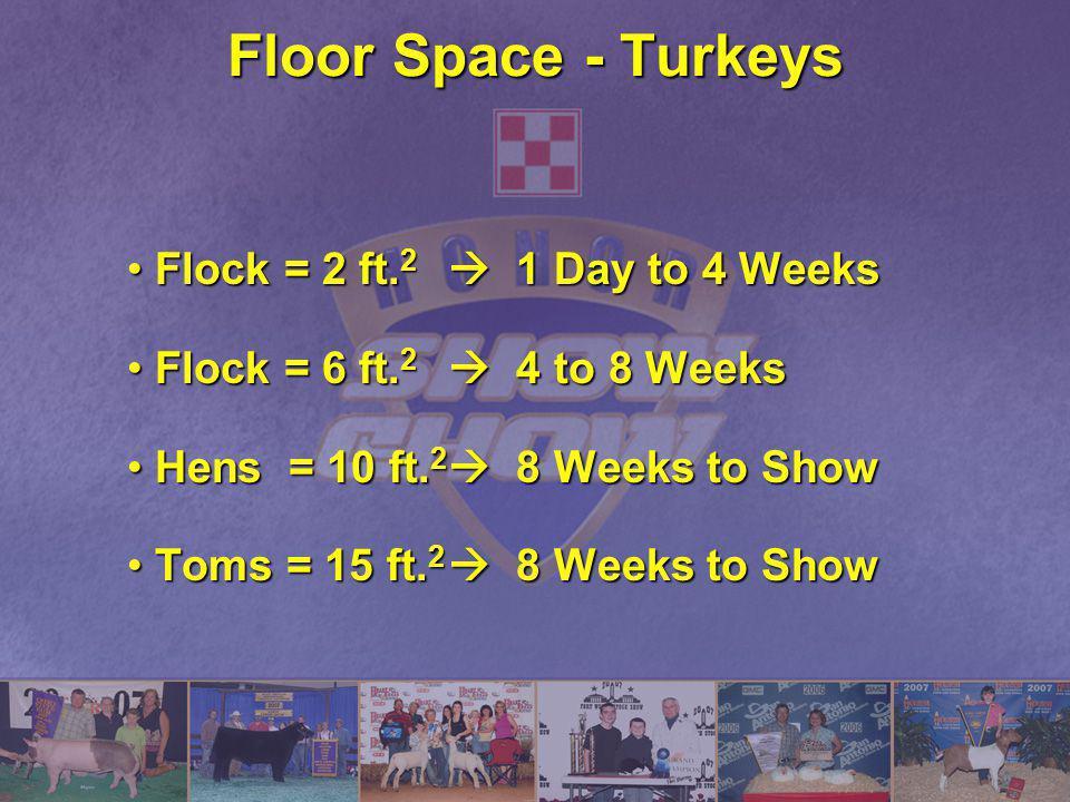 Floor Space - Turkeys Flock = 2 ft.2  1 Day to 4 Weeks