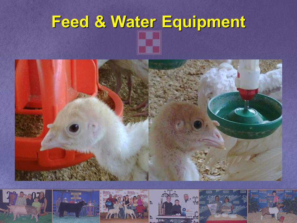 Feed & Water Equipment