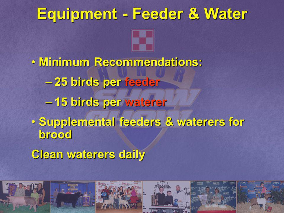 Equipment - Feeder & Water