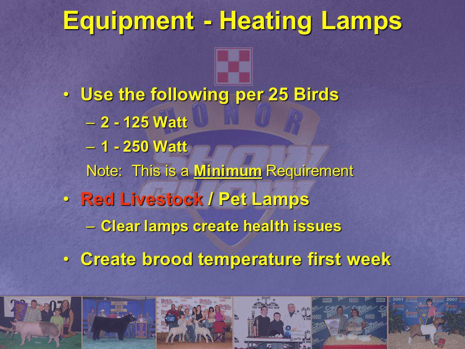 Equipment - Heating Lamps