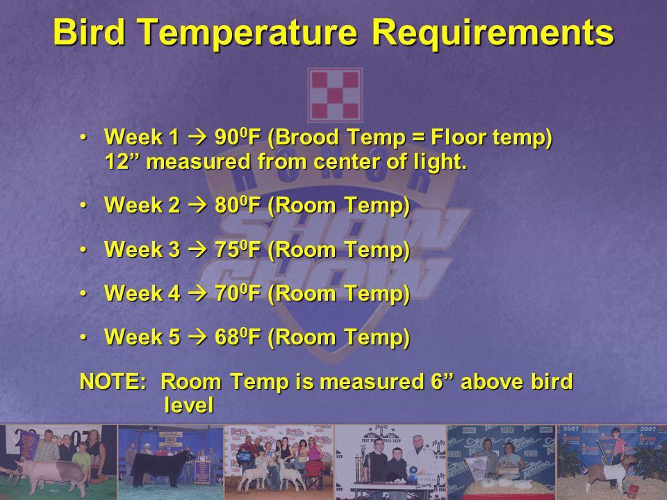 Bird Temperature Requirements