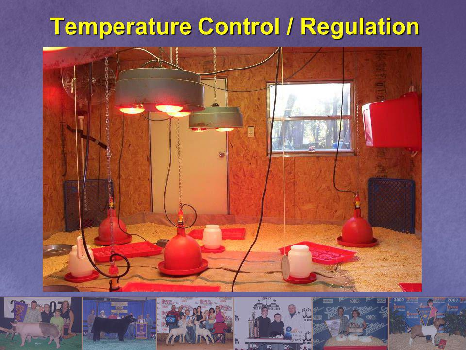 Temperature Control / Regulation