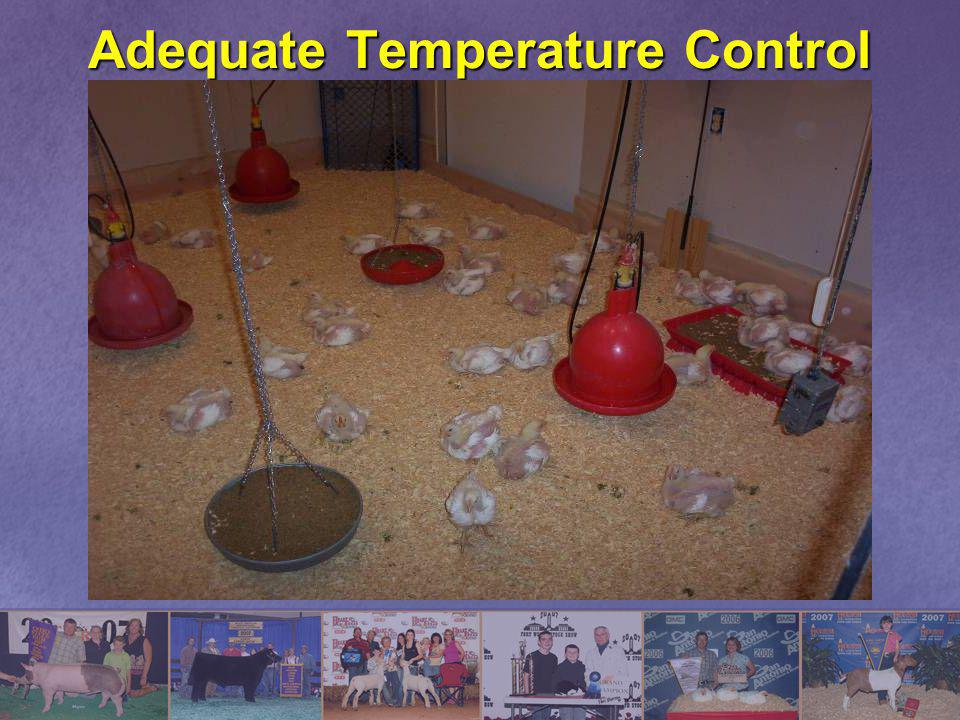 Adequate Temperature Control