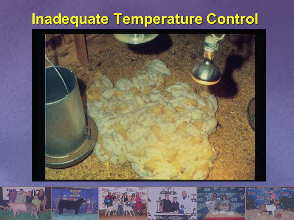 Inadequate Temperature Control