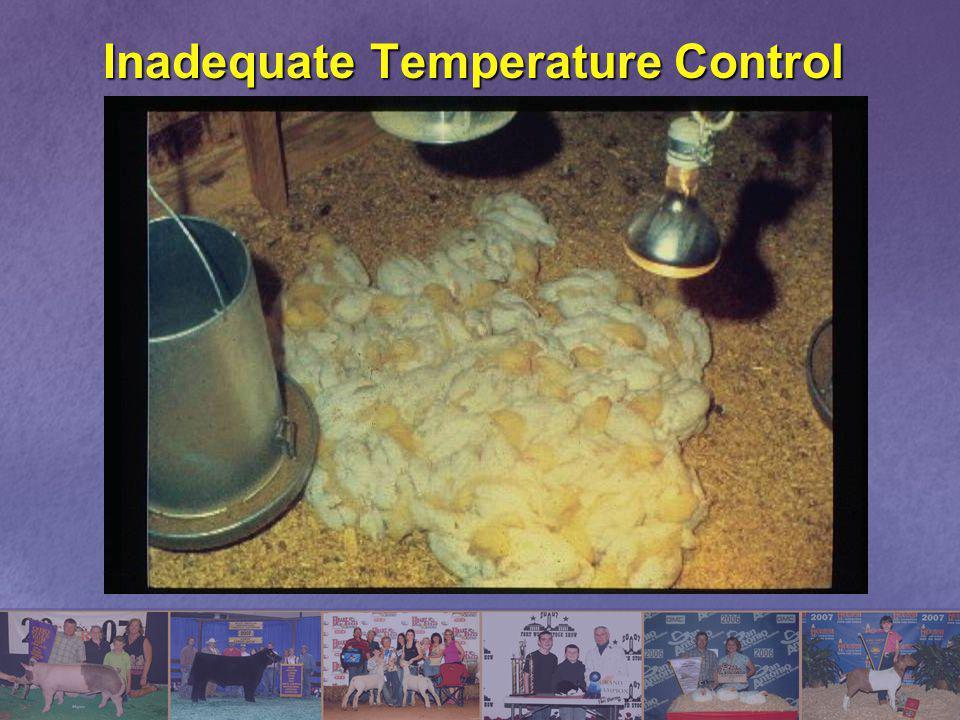 Inadequate Temperature Control