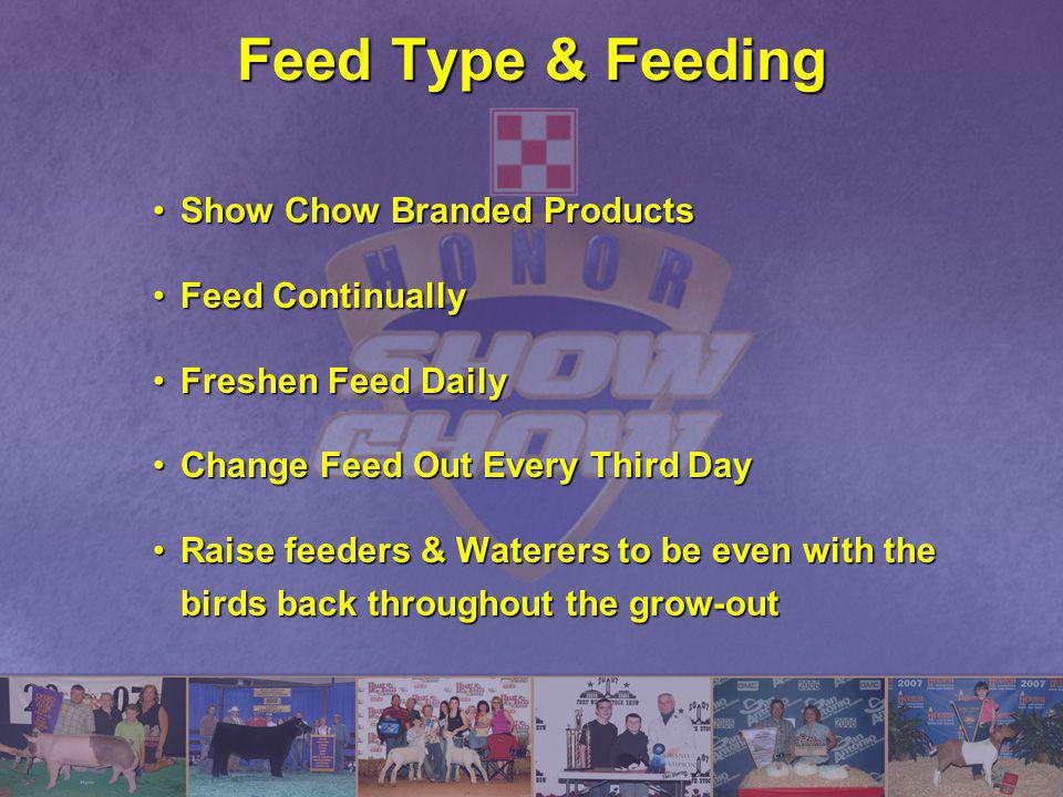 Feed Type & Feeding Show Chow Branded Products Feed Continually