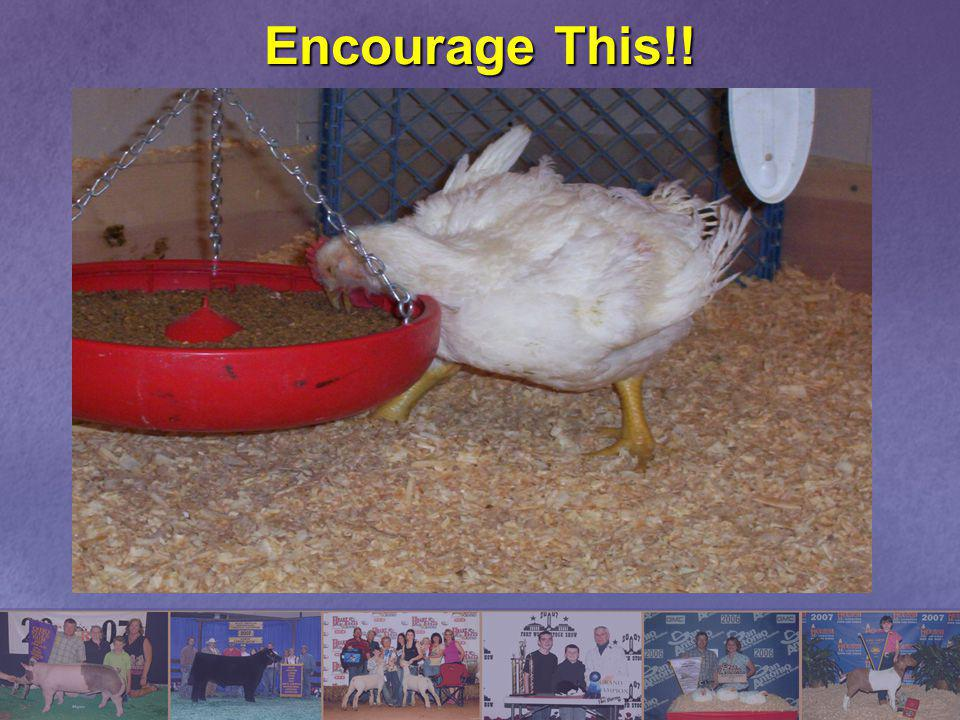 Encourage This!!