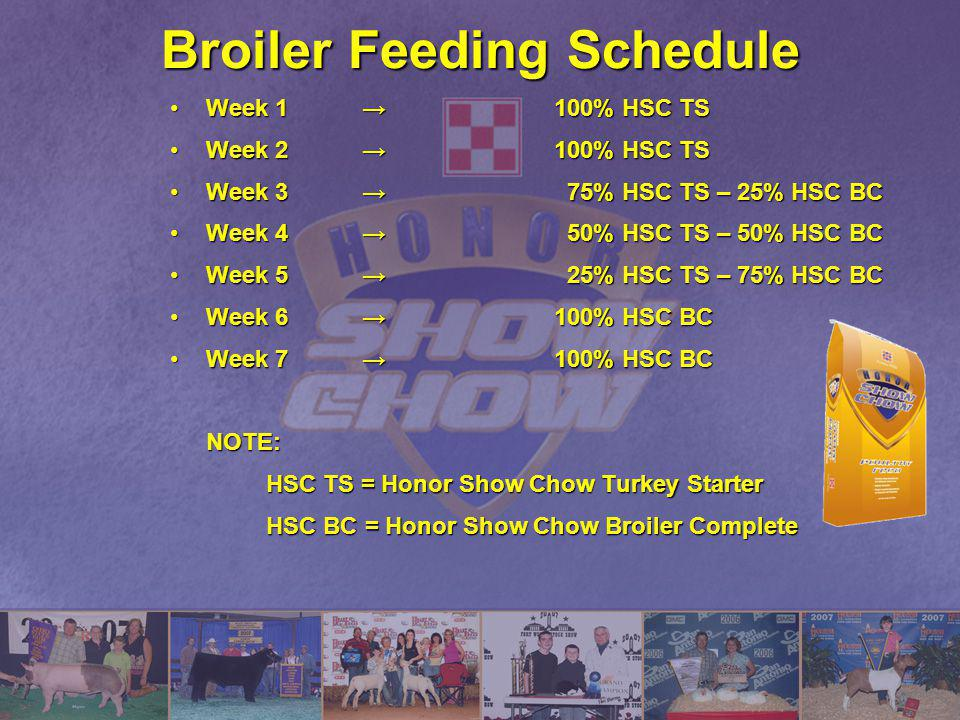 Broiler Feeding Schedule