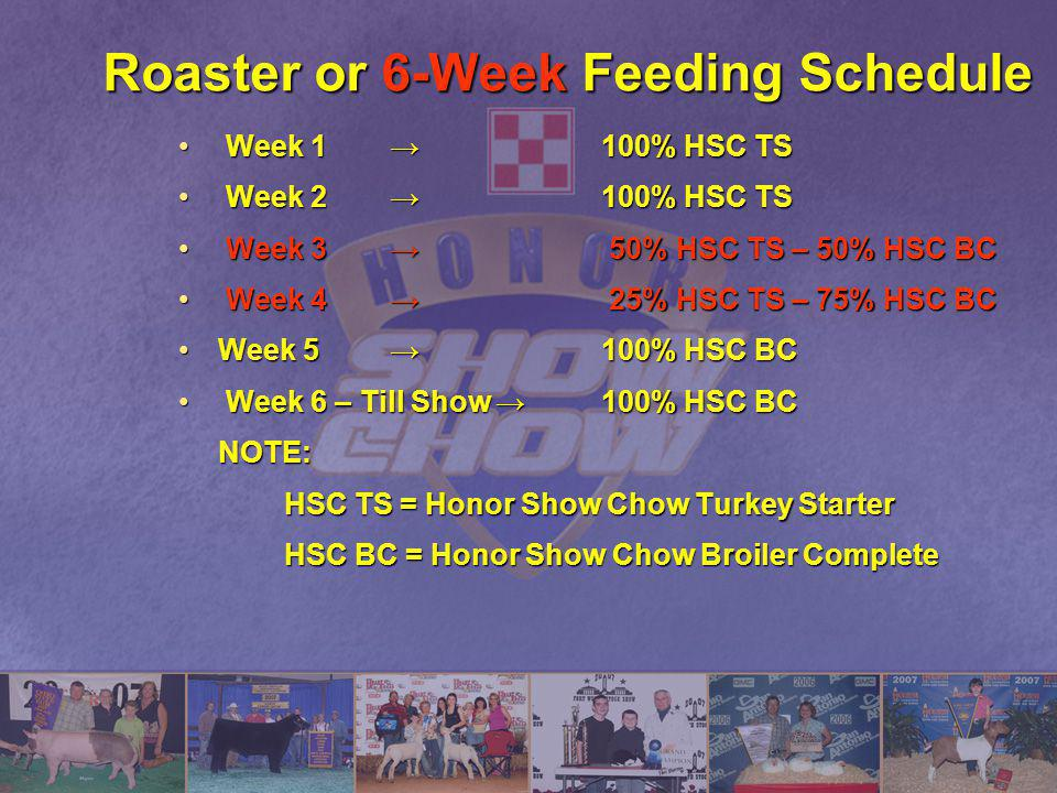 Roaster or 6-Week Feeding Schedule