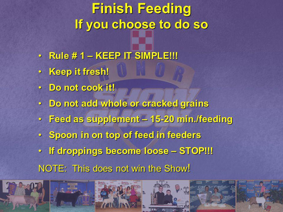 Finish Feeding If you choose to do so
