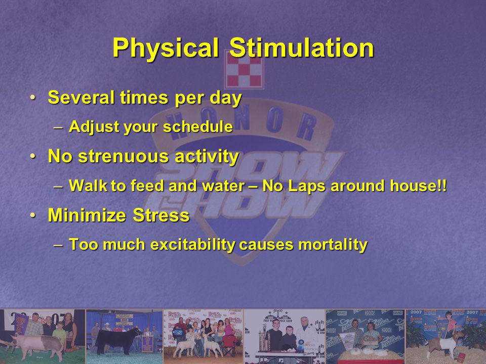 Physical Stimulation Several times per day No strenuous activity