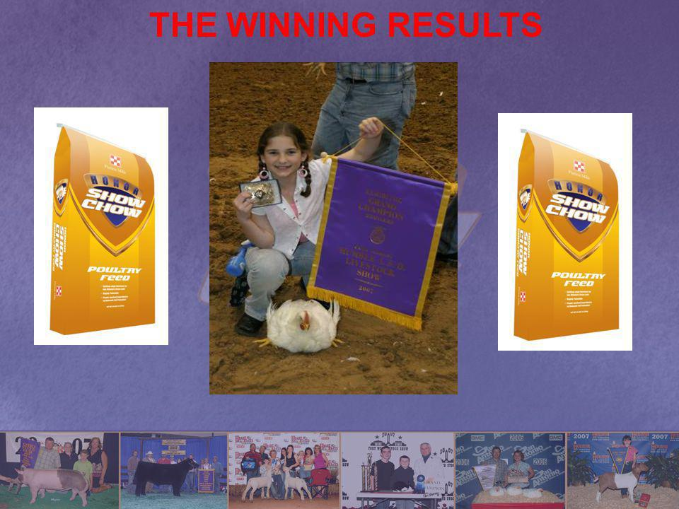 THE WINNING RESULTS