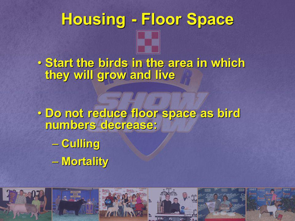 Housing - Floor Space Start the birds in the area in which they will grow and live. Do not reduce floor space as bird numbers decrease: