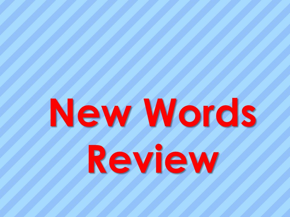 New Words Review
