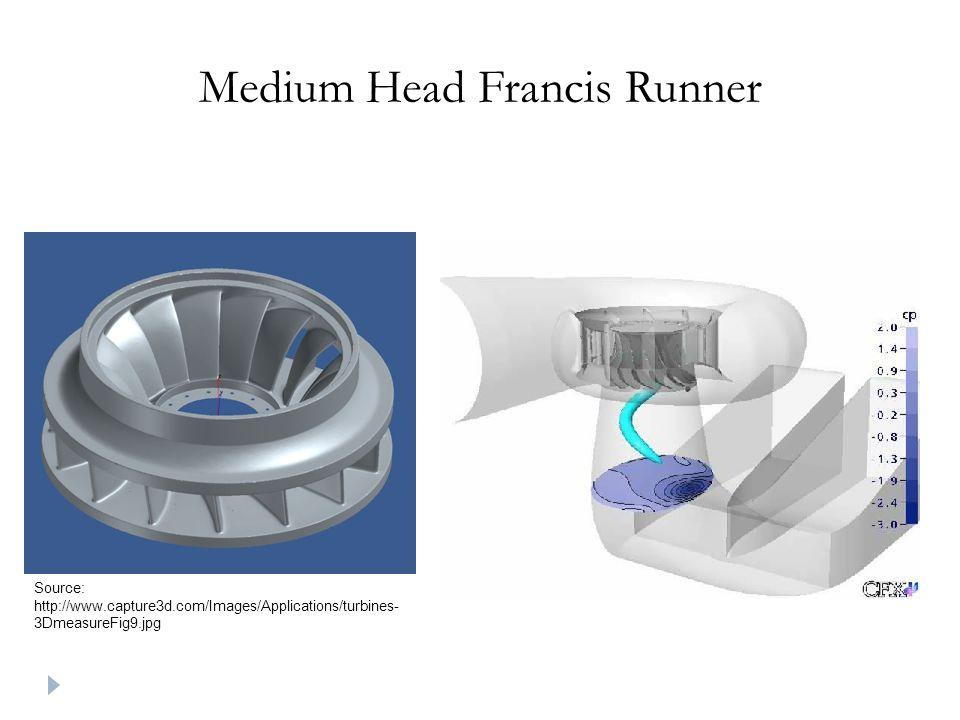 Medium Head Francis Runner