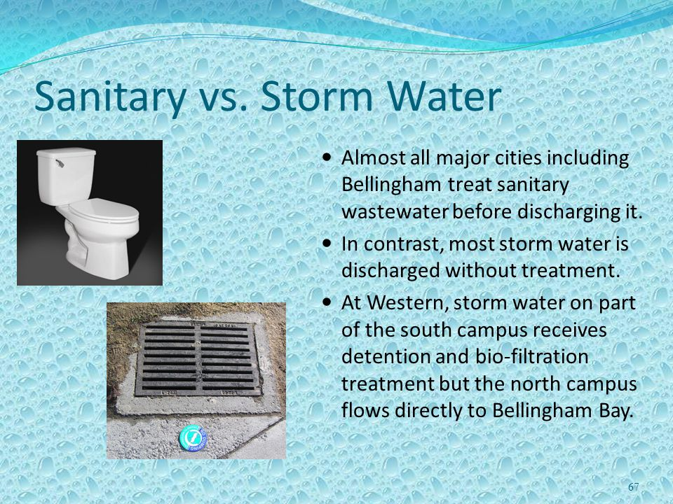 Sanitary vs. Storm Water