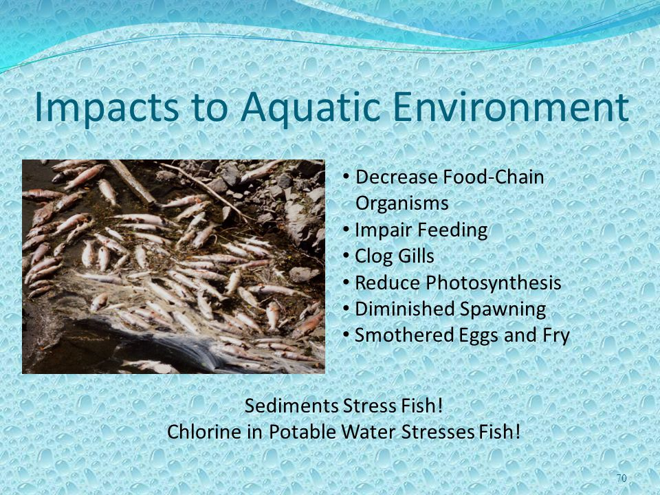Impacts to Aquatic Environment