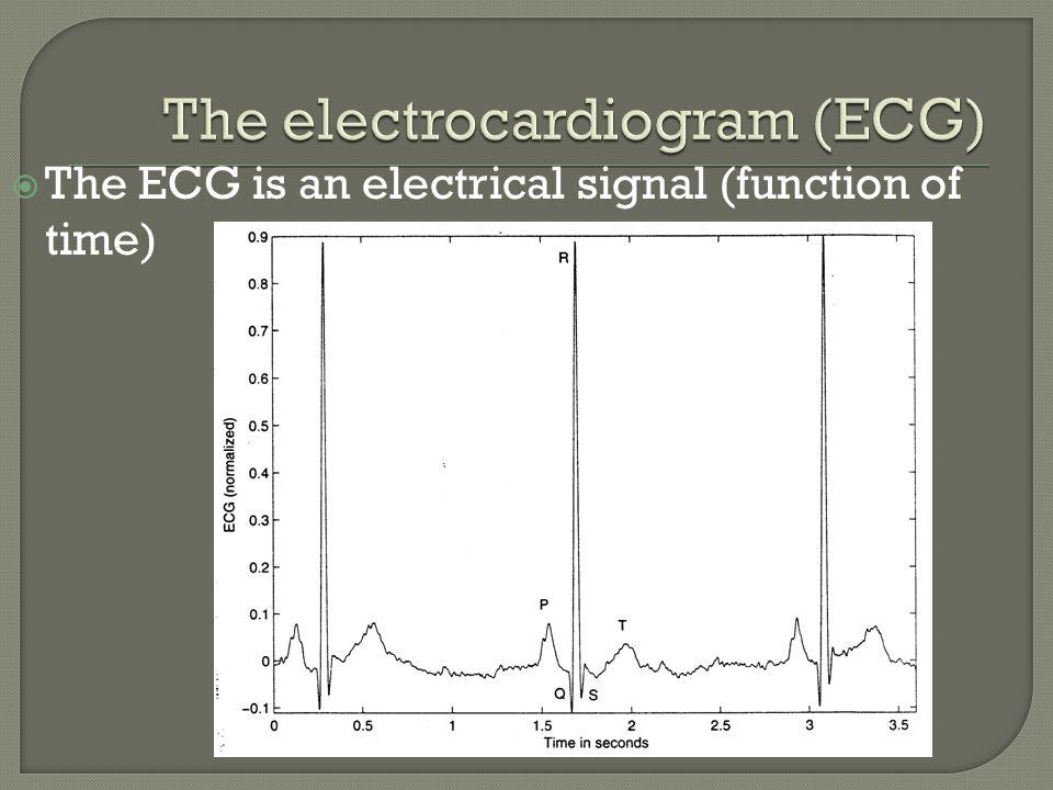 The electrocardiogram (ECG)