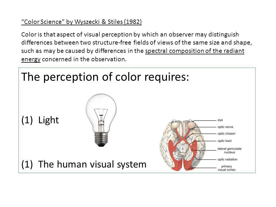 The perception of color requires: