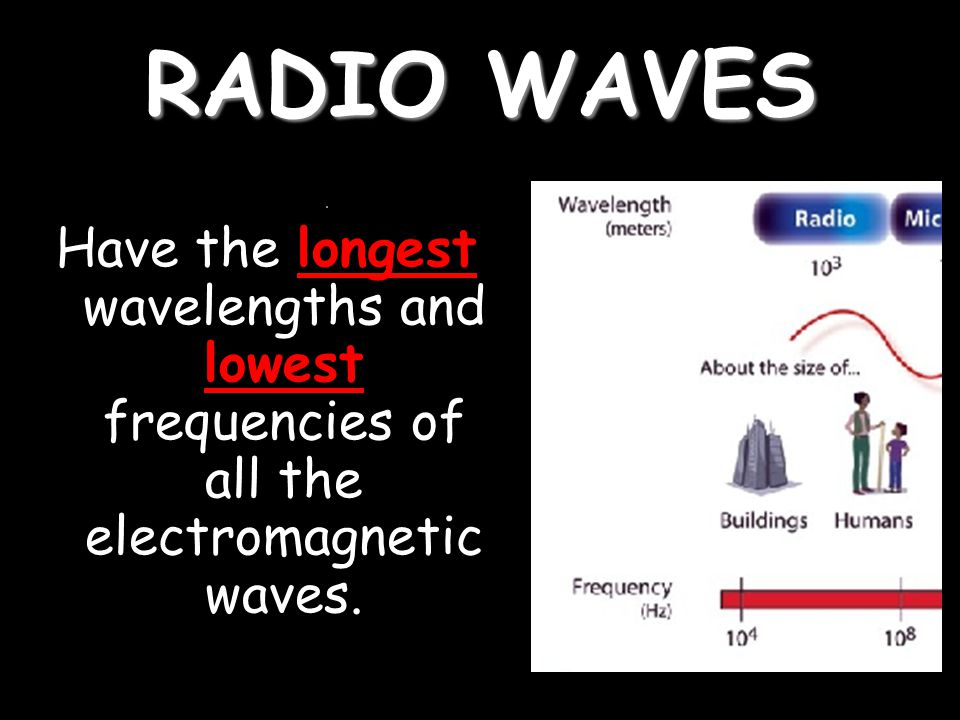 RADIO WAVES Have the longest wavelengths and lowest frequencies of all the electromagnetic waves.