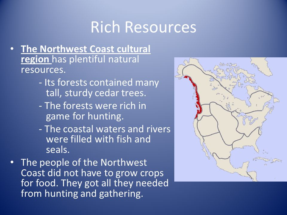 Rich Resources The Northwest Coast cultural region has plentiful natural resources. - Its forests contained many tall, sturdy cedar trees.