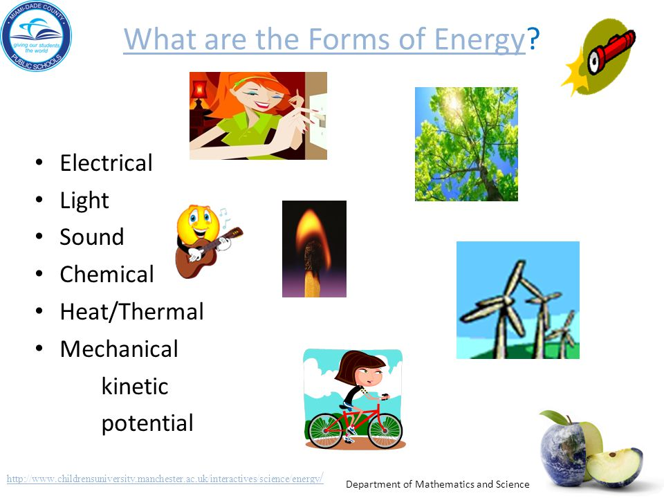 What are the Forms of Energy