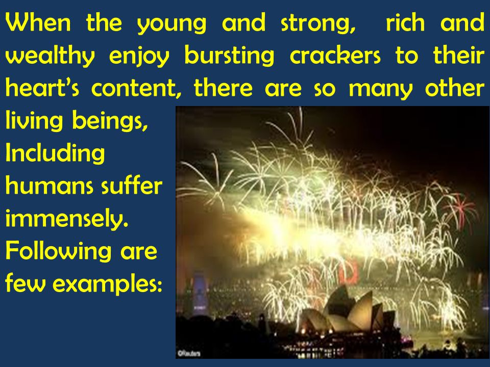 When the young and strong, rich and wealthy enjoy bursting crackers to their heart's content, there are so many other living beings,