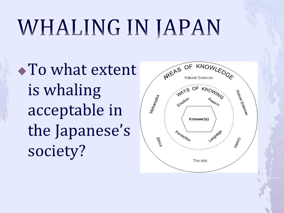 WHALING IN JAPAN To what extent is whaling acceptable in the Japanese's society
