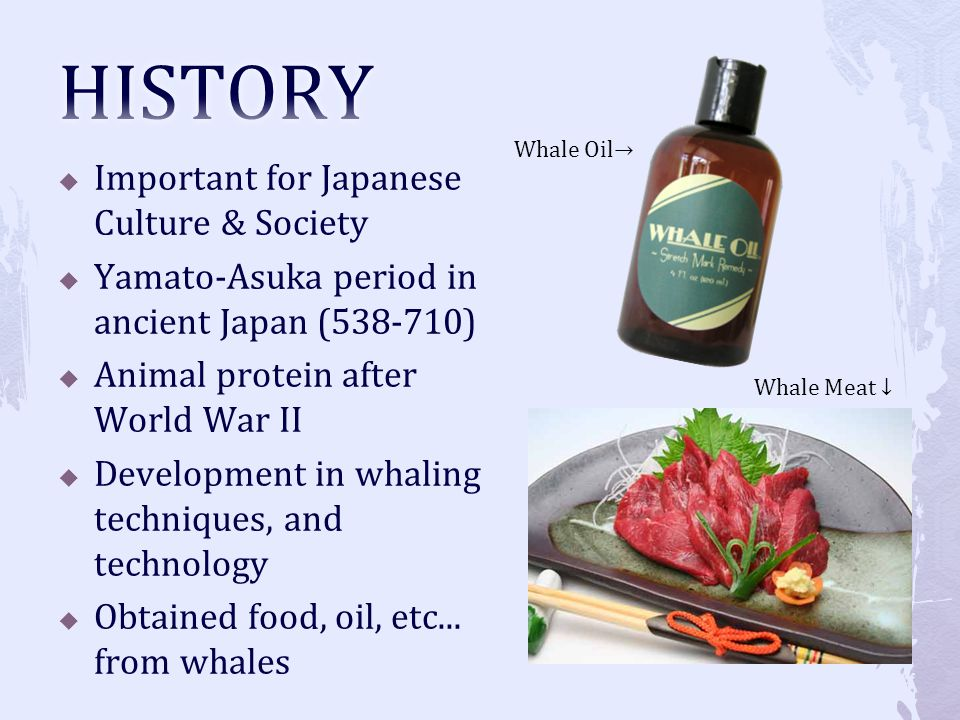 HISTORY Important for Japanese Culture & Society