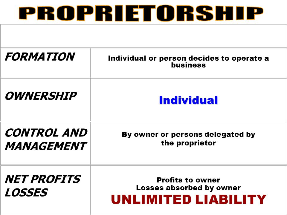 PROPRIETORSHIP UNLIMITED LIABILITY FORMATION OWNERSHIP