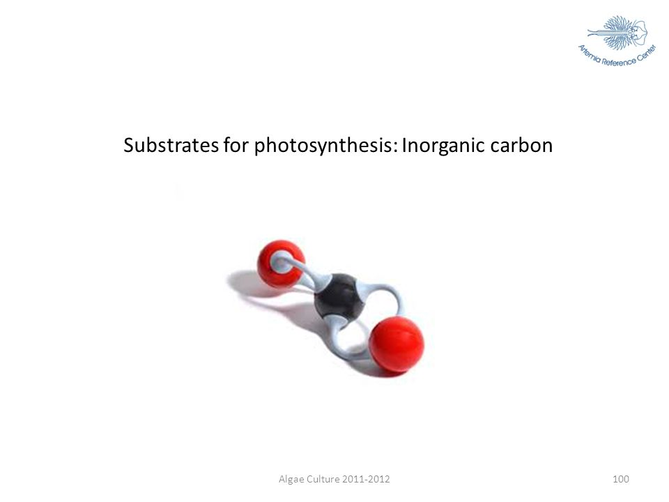 Substrates for photosynthesis: Inorganic carbon