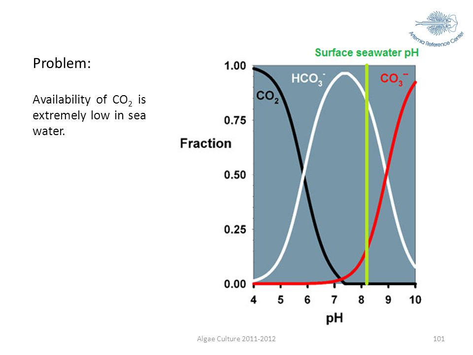 Problem: Availability of CO2 is extremely low in sea water.