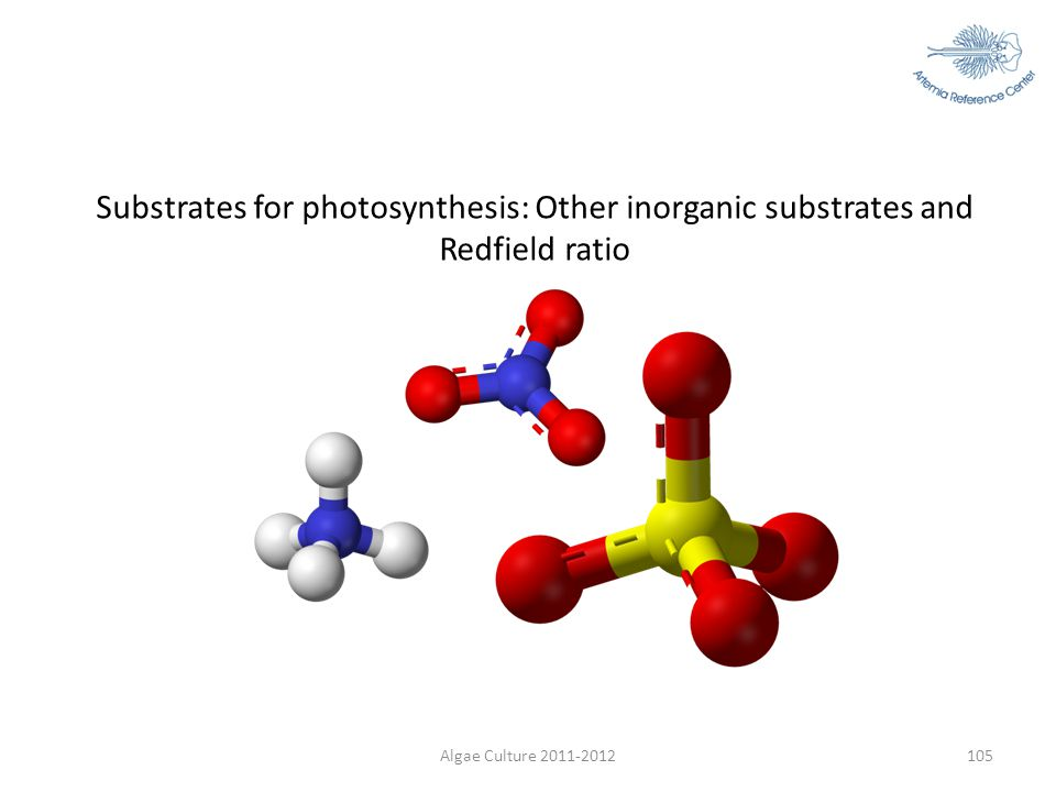 Substrates for photosynthesis: Other inorganic substrates and Redfield ratio