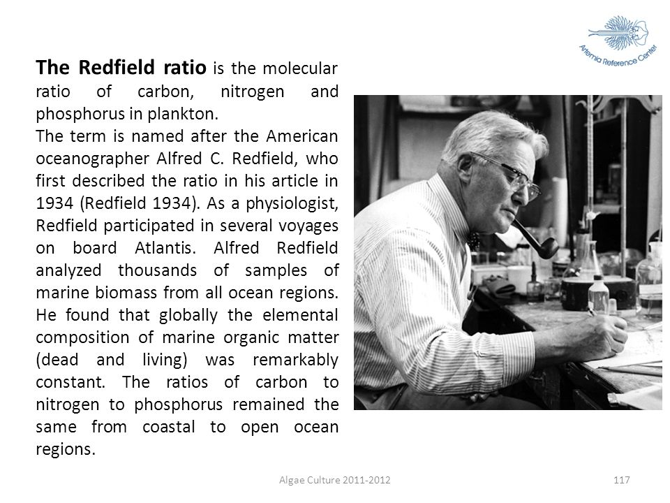 The Redfield ratio is the molecular ratio of carbon, nitrogen and phosphorus in plankton.