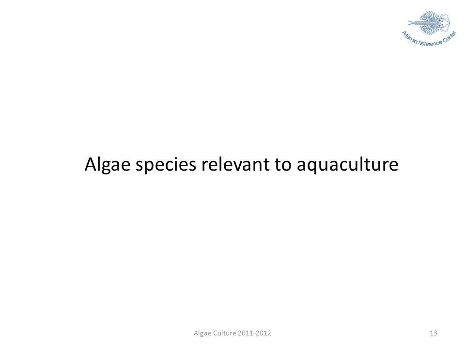 Algae species relevant to aquaculture