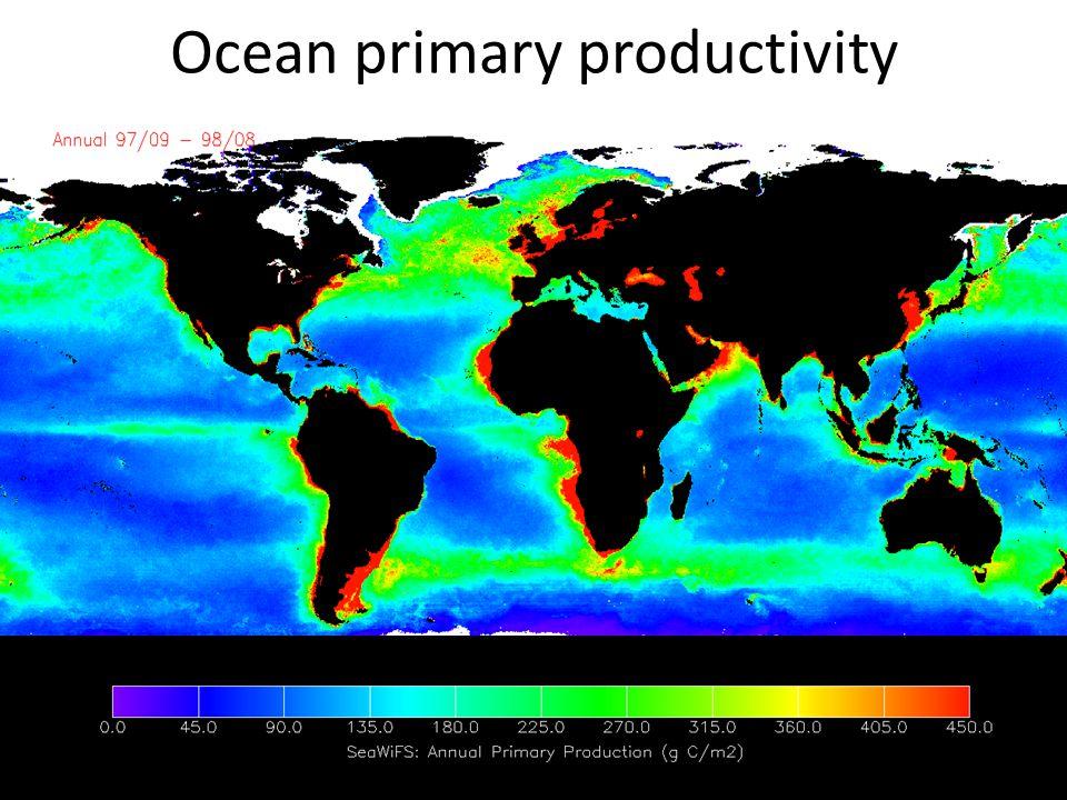 Ocean primary productivity