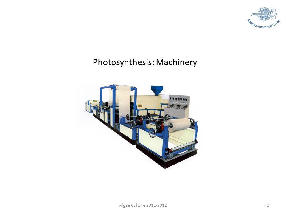 Photosynthesis: Machinery