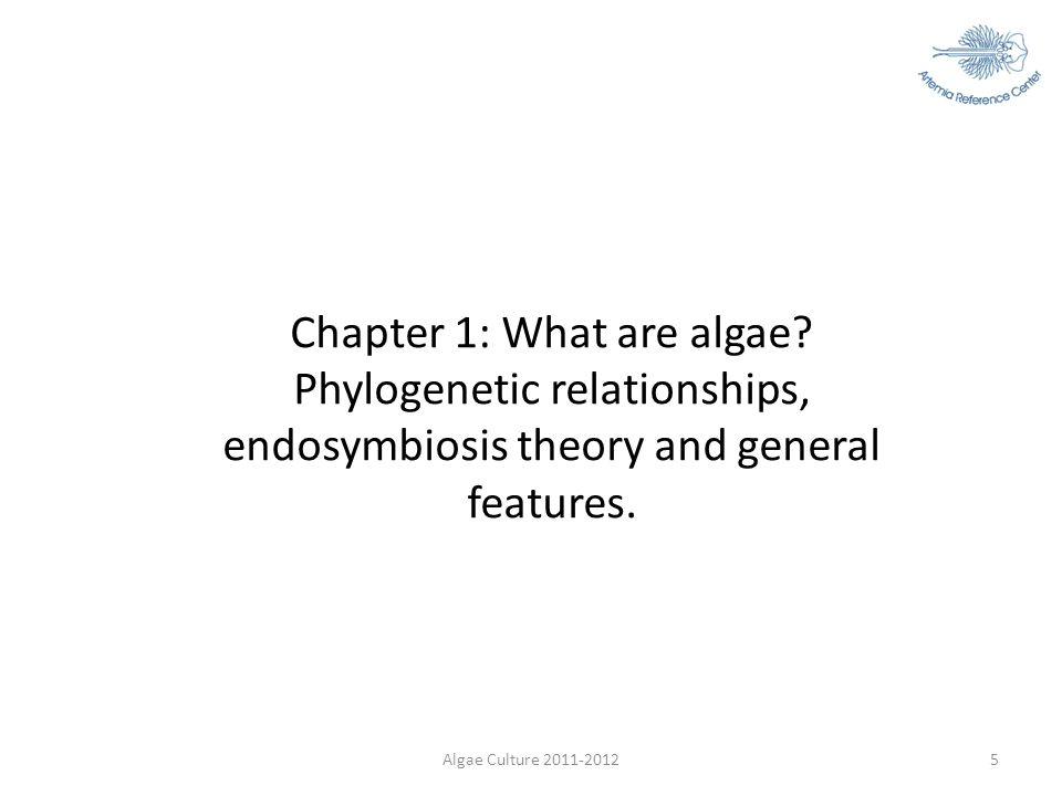 Chapter 1: What are algae