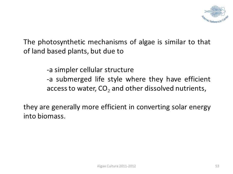 -a simpler cellular structure